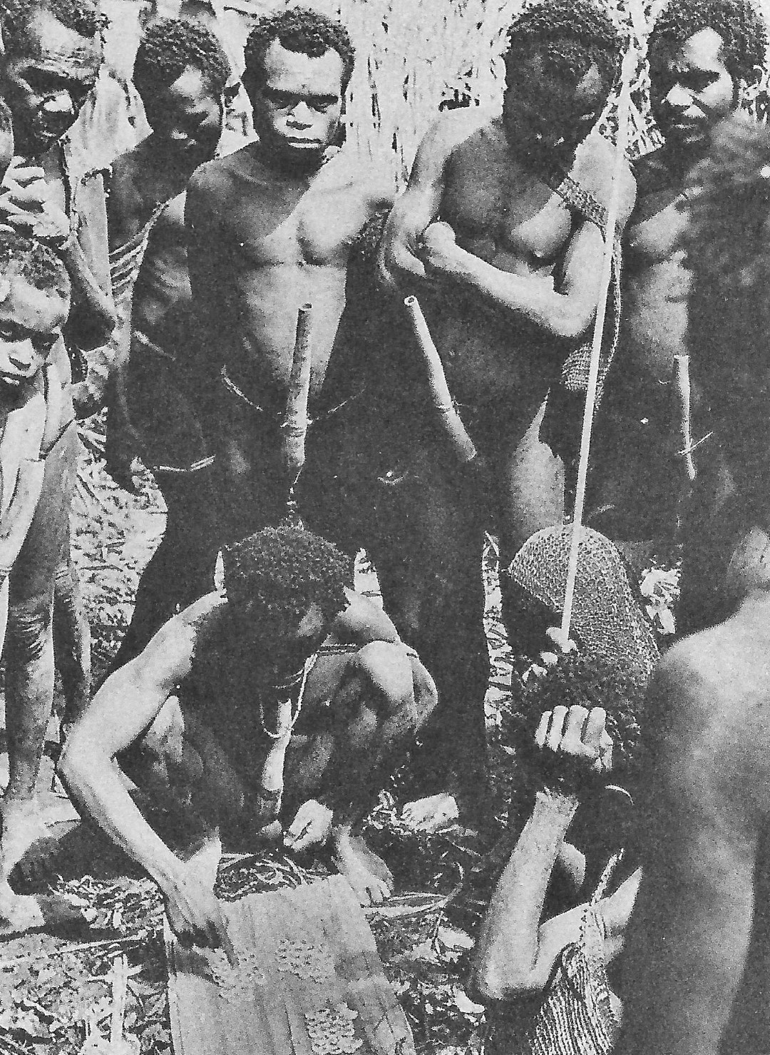 Abb. 1-1: Indonesien: Provinz Papua: Dorf Botukebo. Männer der Kapauku zahlen einen Brautpreis (aus Pospisil, 1962)